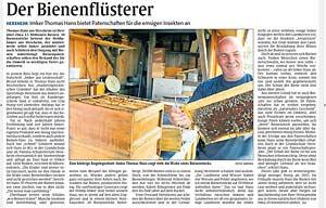 Imker Thomas Hans bietet Patenschaften für die emsigen Insekten an
